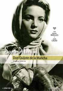 caballero don quijote: