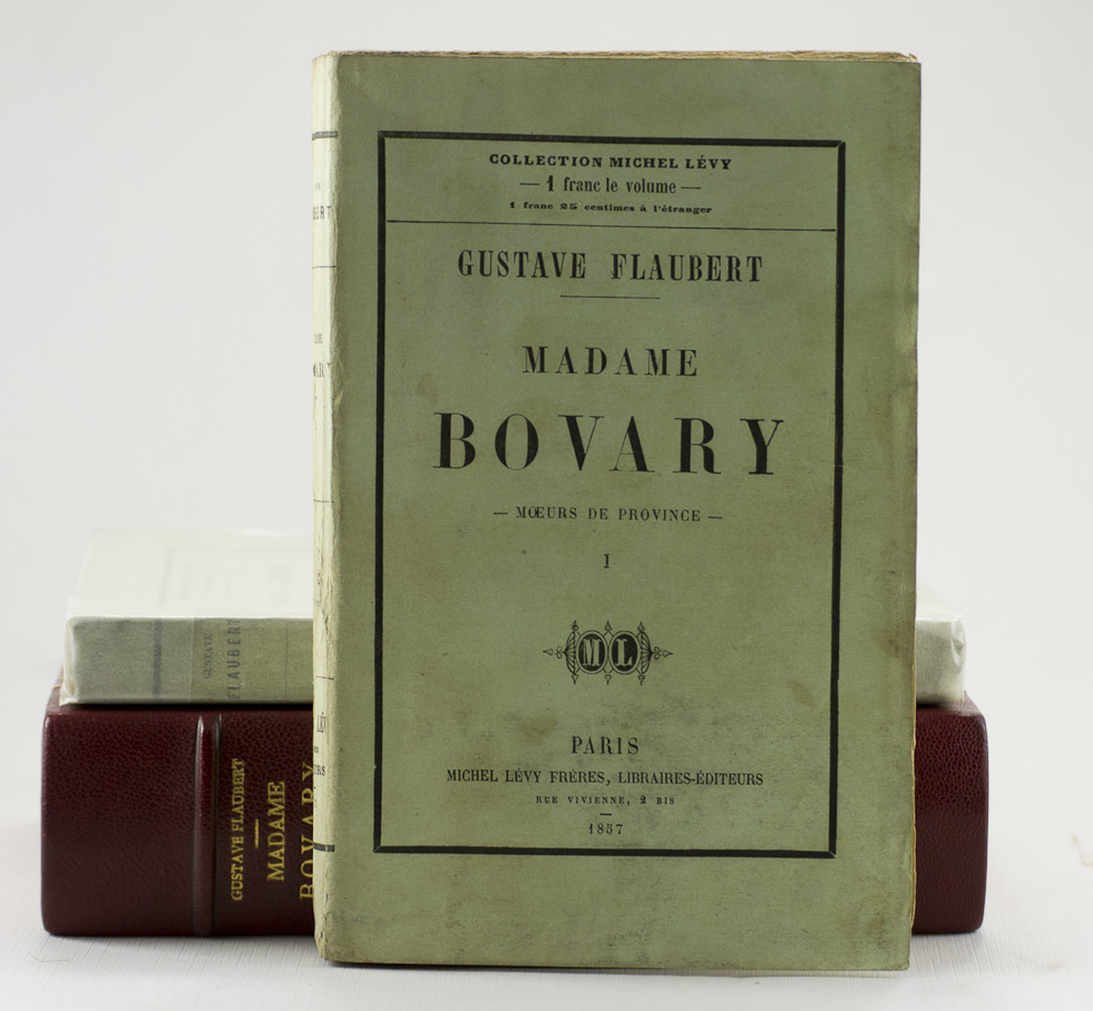 Madame bovary and written on the body essay